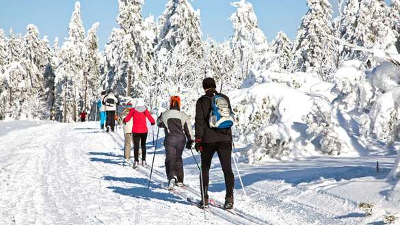 Try Cross-Country Skiing